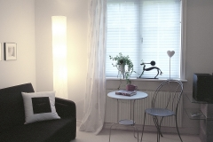 PLEATED BLINDS15