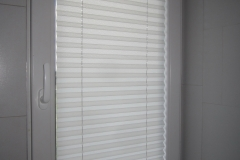 PLEATED BLINDS30