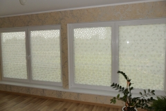 PLEATED BLINDS53