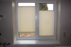 PLEATED BLINDS56