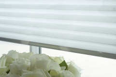 PLEATED BLINDS6
