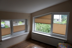 PLEATED BLINDS62