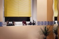Venetian blinds2