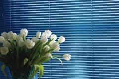Venetian blinds26