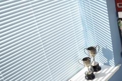 Venetian blinds43